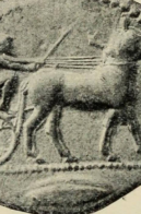 Greek charioteer